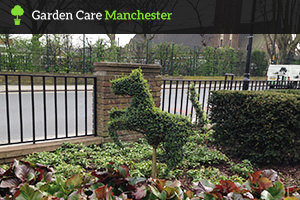Garden Maintenance in Manchester